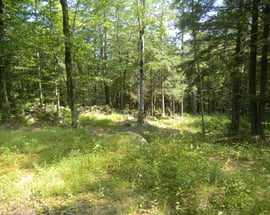 00 Ivy Mountain-lot2 Road