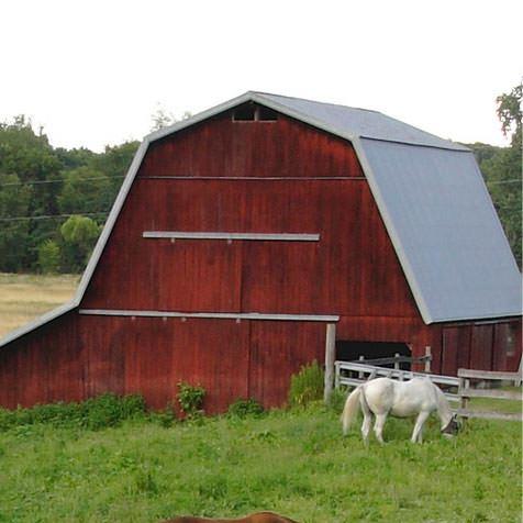 International Farm & Ranch