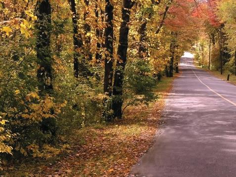 Seasonal Westchester County NY