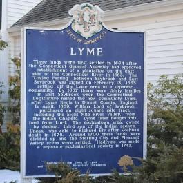lyme-img6