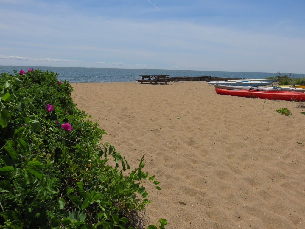 Beach Home
