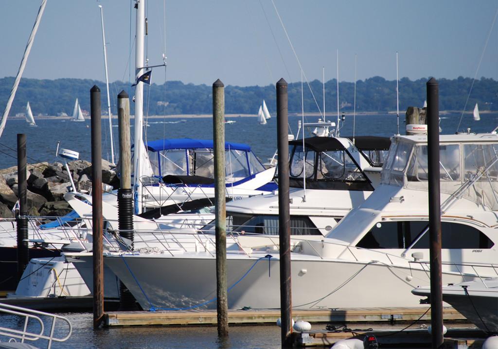 boats at marina large