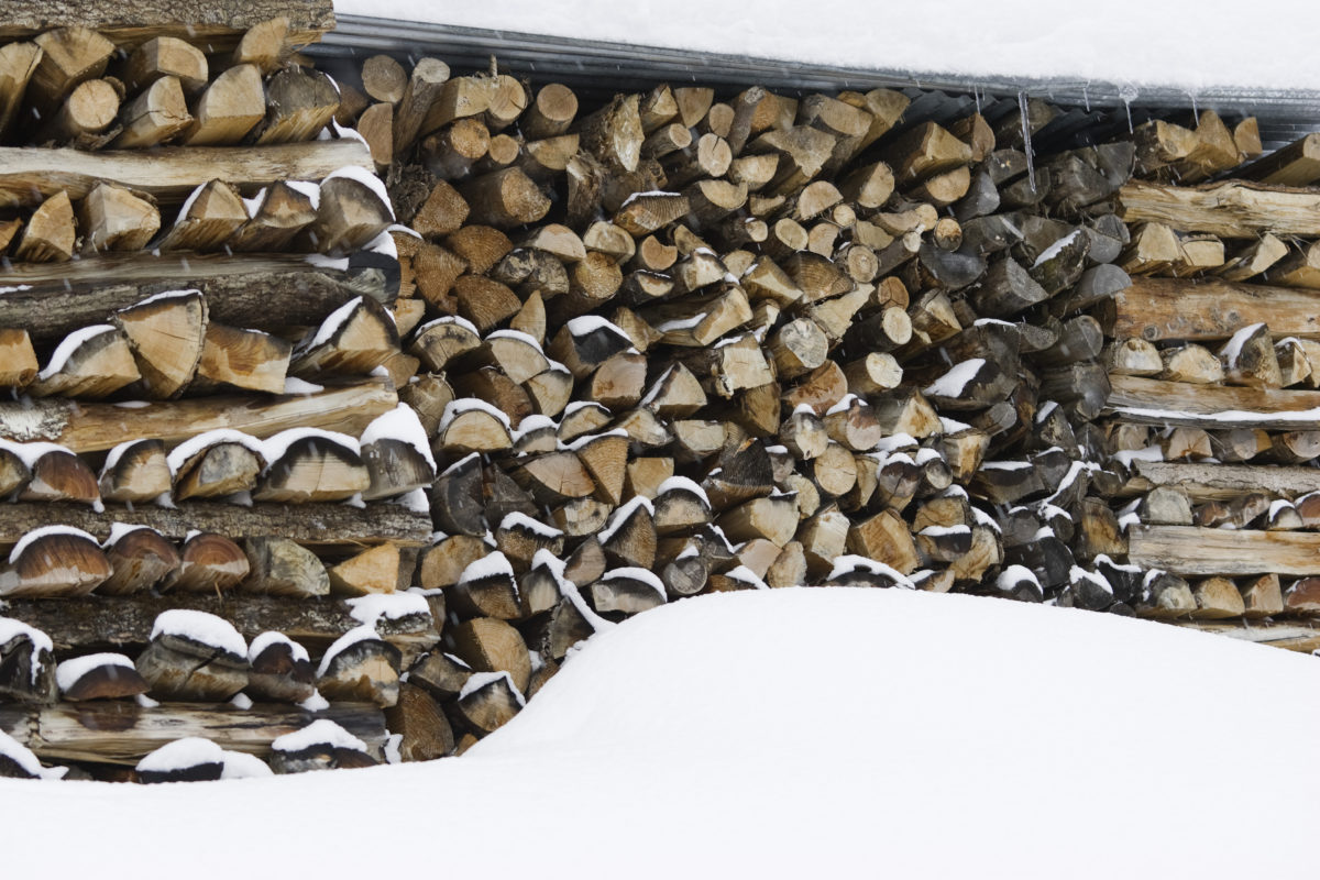 Stacked firewood and snow