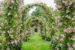 Rose Covered Archways at Elizabeth Park, West Hartford, CT