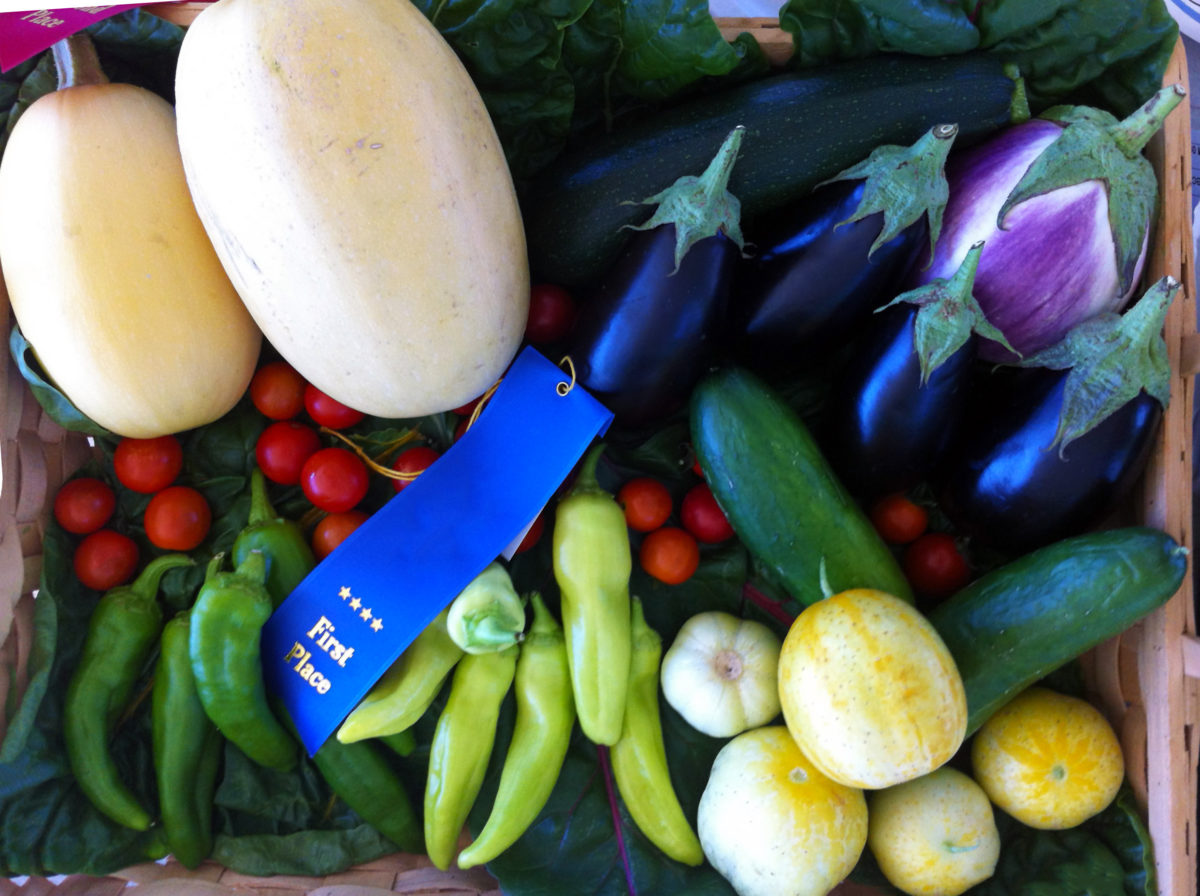 blue ribbon fruits and vegetables at a sate fair in utah