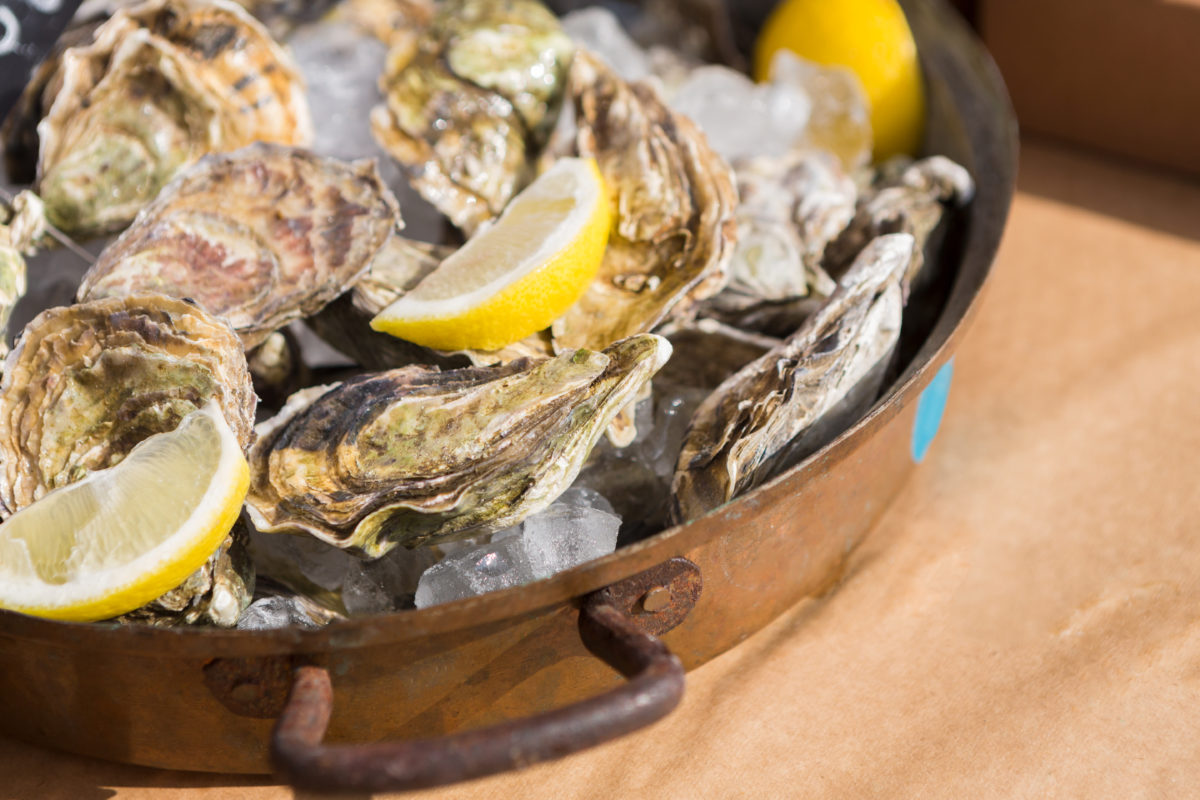 Fresh oysters on tray with ice and lemon pieces. Delicious seafood