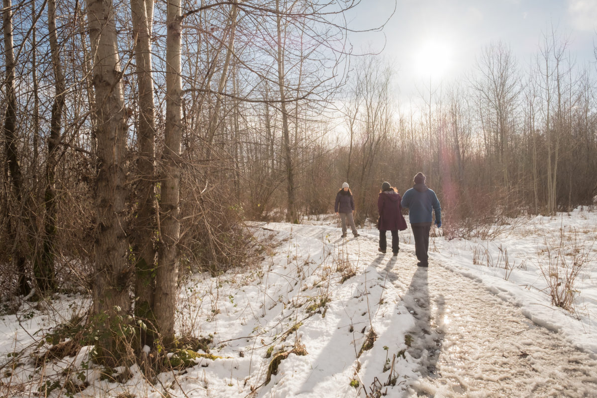 Family walking along snow covered trail at Maplewood Flats, North Vancouver, British Columbia, Canada